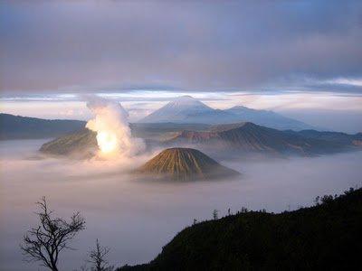 Hanya di Indonesia