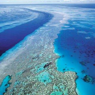 Tanjung karang terluas dan tercantik - sulawesi